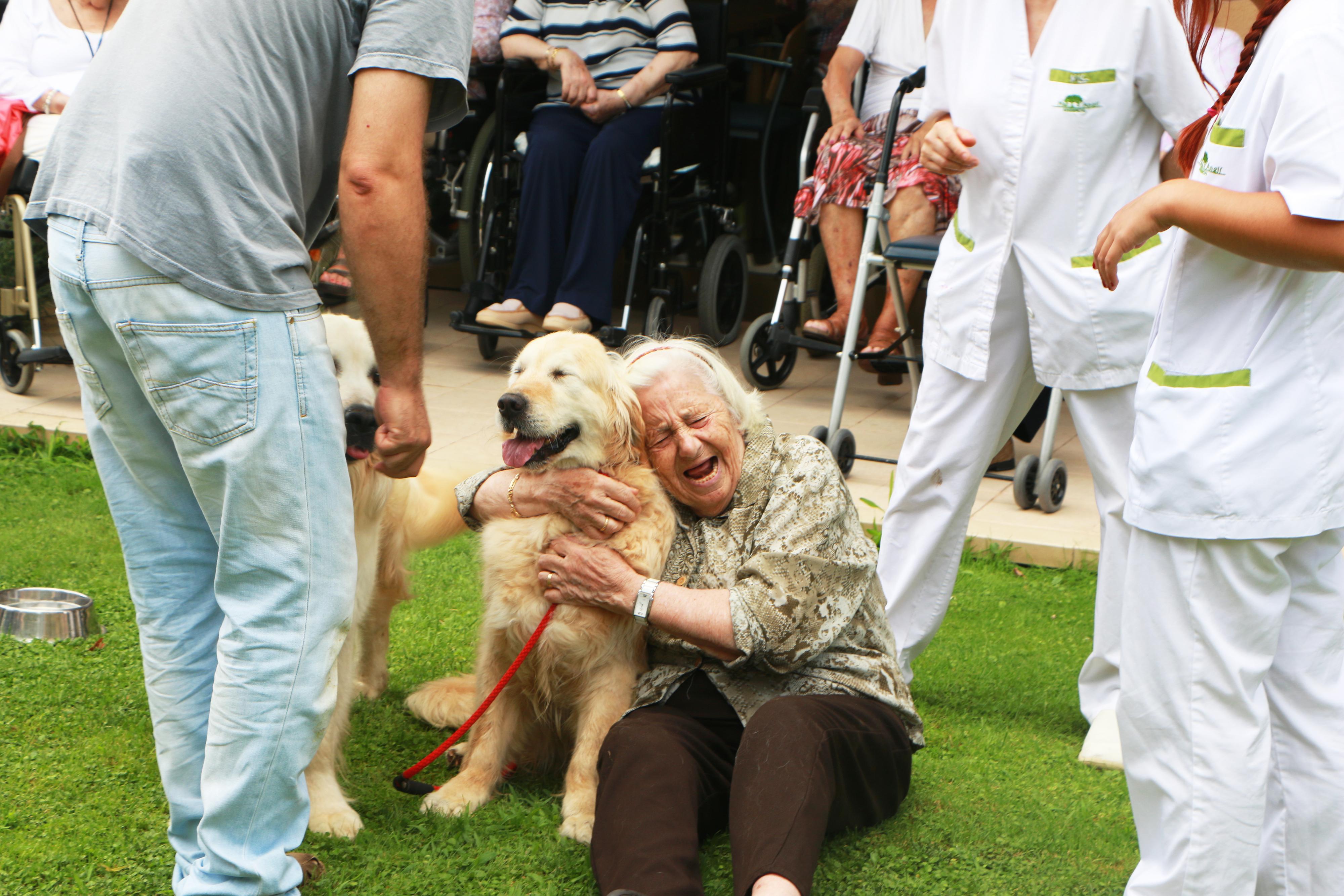 beneficis de la teràpia assistida amb animals_2