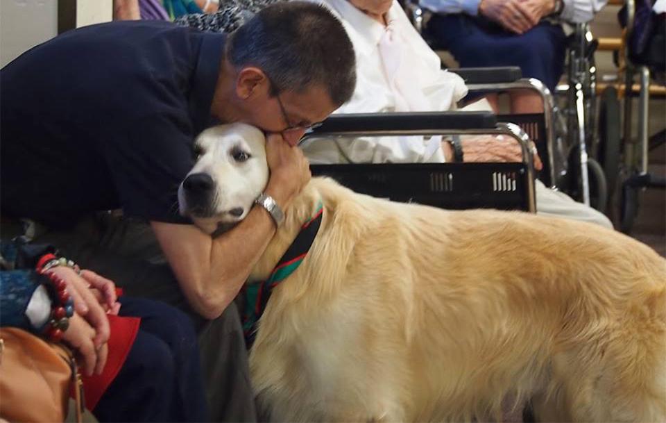 Beneficis de la teràpia assistida amb animals