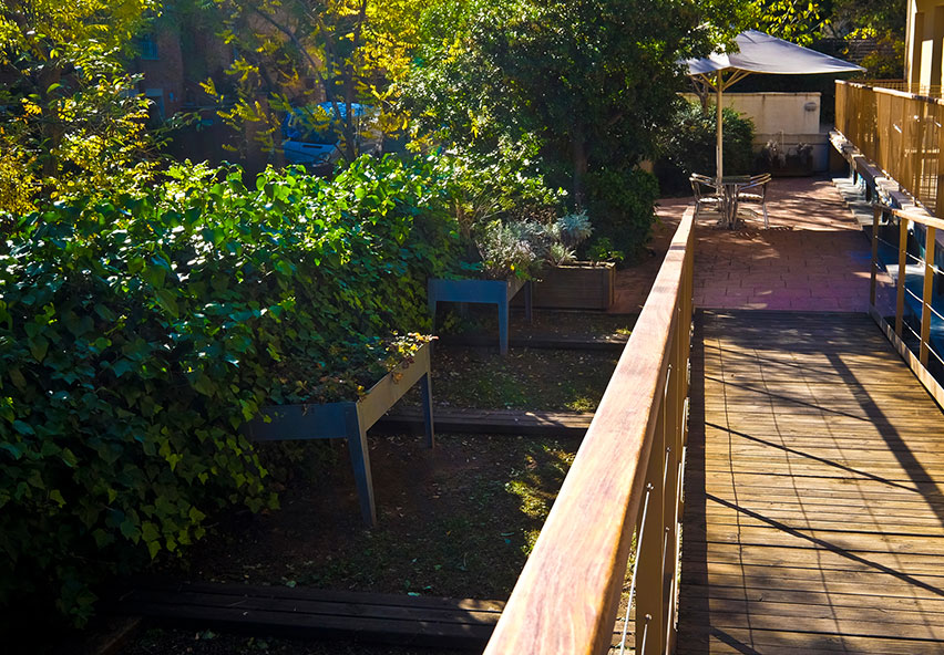 rampa de fusta al jardí