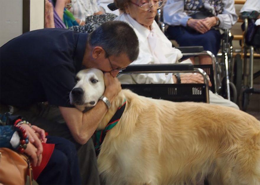 Beneficios de la terapia asistida con animales